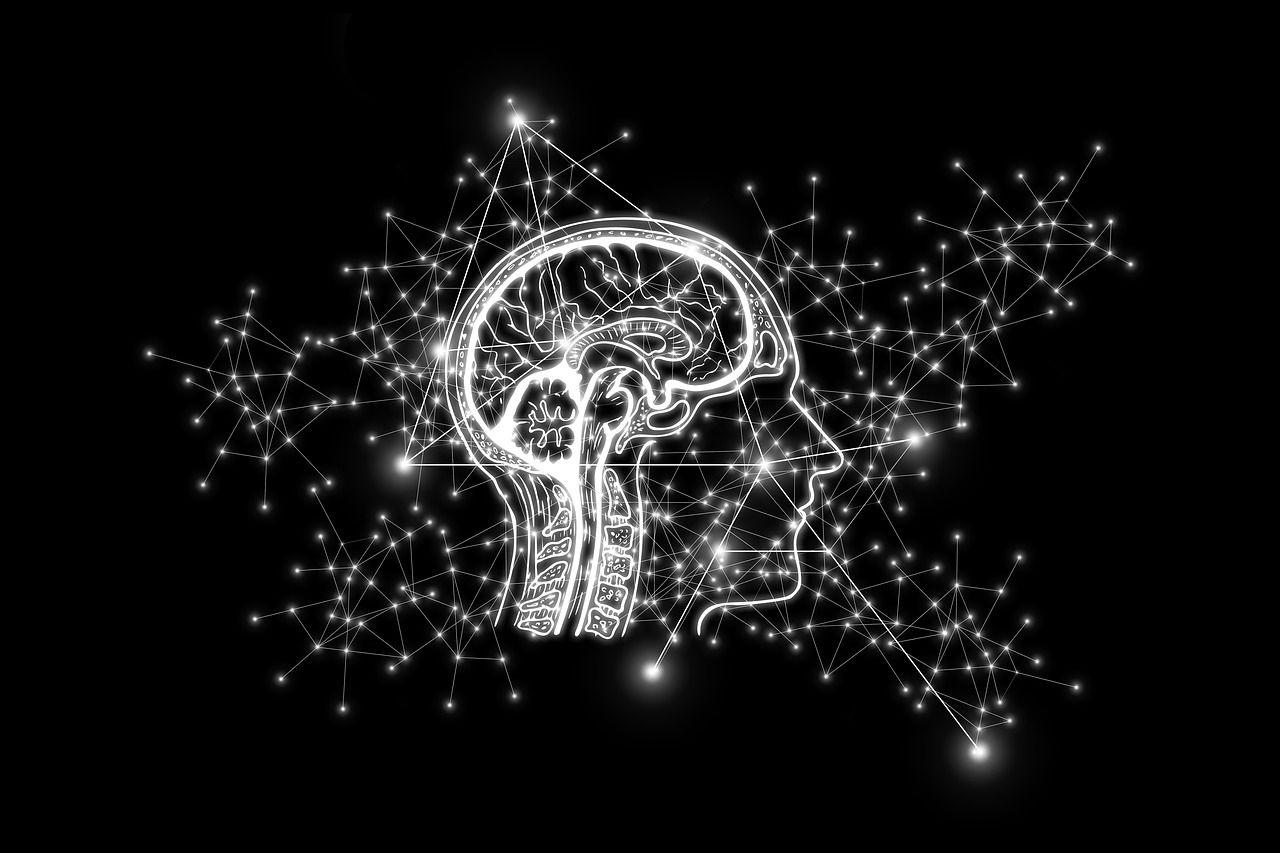 Umělá inteligence používaná vPravda Capital